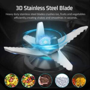6 stainless steel blades